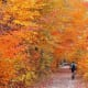 14. VermontOther Rankings:Affordability: 42Crime: 1 (tied with New Hampshire)Culture: 3Weather: 44Wellness: 1Photo: Shutterstock