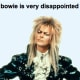 Just wanted to let you know that David Bowie is very disappointed in you. That's all. Moving along now. Photo Credit: DavidBowieIsVeryDisappointedInYou.com