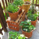 A garden is the most direct and perhaps rewarding approach to improving the overall aesthetics of your yard. You can keep this project simple (and cost effective) by planting a small container garden. Just buy a few cheap terracotta pots (Home Depot sells these for $1.27 to $19.98, depending on size), some soil and a couple of $2 seed packets and you're on your way. The truly frugal can also use old porcelain bowls, urns or watering cans to start their flower collection. This potting project can cost anywhere from $10 -$50, but you can mix things up and plant your own fruits or vegetables, which can actually save you money in the long term. Besides, who knows? Gardening may be the key to achieving the work/life balance you've always wanted. Photo Credit: thomas pix