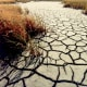 Damages: $55.4 Billion It's hard to talk about the severity of the 1980 heatwave that struck the central and eastern U.S. in the summer of that year, as the estimated 10,000 deaths attributed to it (many from sand- and windstorms) go far beyond calculable costs. Numerous temperature records were set that that summer in Missouri, Tennessee and Texas, with Dallas experiencing 42 straight days of temperatures of more than 100 degrees Fahrenheit. Economic losses to agriculture and related industries came to more than $55 billion, making this the third most expensive weather disaster in recent U.S. history. Photo Credit: USGS