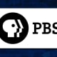 """The Public Broadcasting Services (PBS) delivers high quality, culturally enriching programs through local affiliates. But, it also represents a broad civic ideal to nurture an enlightened populous across all classes, income levels, or dispositions. It's programming for children-it was the home of """"Sesame Street"""" for decades, and PBS Kids has been a wild success in recent years-is second to none and, notably, free to anyone."""