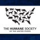 The country's largest animal protection organization, the Human Society and its affiliates provide hands-on care for more than 100,000 animals each year, training for caregivers, and education to the public. Helping to eradicate animal cruelty, and raise the standard of care for affected animals, the Human Society continues to make strides toward a more just society that counts furry friends along with people.
