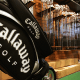 Sector: Leisure Products Market Cap: $1.1 billionCallaway Golf  reported on July 27 quarterly earnings of 36 cents a share, surpassing Wall Street estimates and rising 140% from the previous year. Analysts were expecting the golf club and golf ball maker to post earnings of 30 cents a share for the June-ending quarter.Shares of the Carlsbad, Calif.-based company are up 23% for 2016, helped by Nike's  decision to exit the golf club business earlier this month.