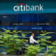 Citibank's Bronx, N.Y. branch offers a rate of 3.75%.