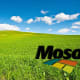 Mosaic cut its dividend in February as the market for phosphate products (used in farming) pushed potash and phosphate prices to lows not seen in several years.Earnings fell more than 50% year-over-year and the company wound up cutting its dividend as a result. Reality Shares, which tracks the financial health of a company, gives the company a DIVCON score of 1, the lowest among dividend-paying companies it tracks.