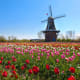 With its annual tulip festival and distinctive Dutch architecture, this popular retirement and tourist community of 34,000 has some resemblance to a charming town in the Netherlands.