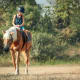 For trail riding, the guidelines are similar to hiking: keep it short and stick close to home. Many equestrian competitions have been canceled lately. If you do go riding for pleasure, Penn State Extension suggests considering how overwhelmed the hospitals are around you, should you fall off and get injured.