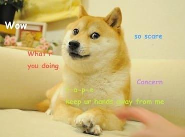 https://en.wikipedia.org/wiki/Doge_(meme)#/media/File:Original_Doge_meme.jpg