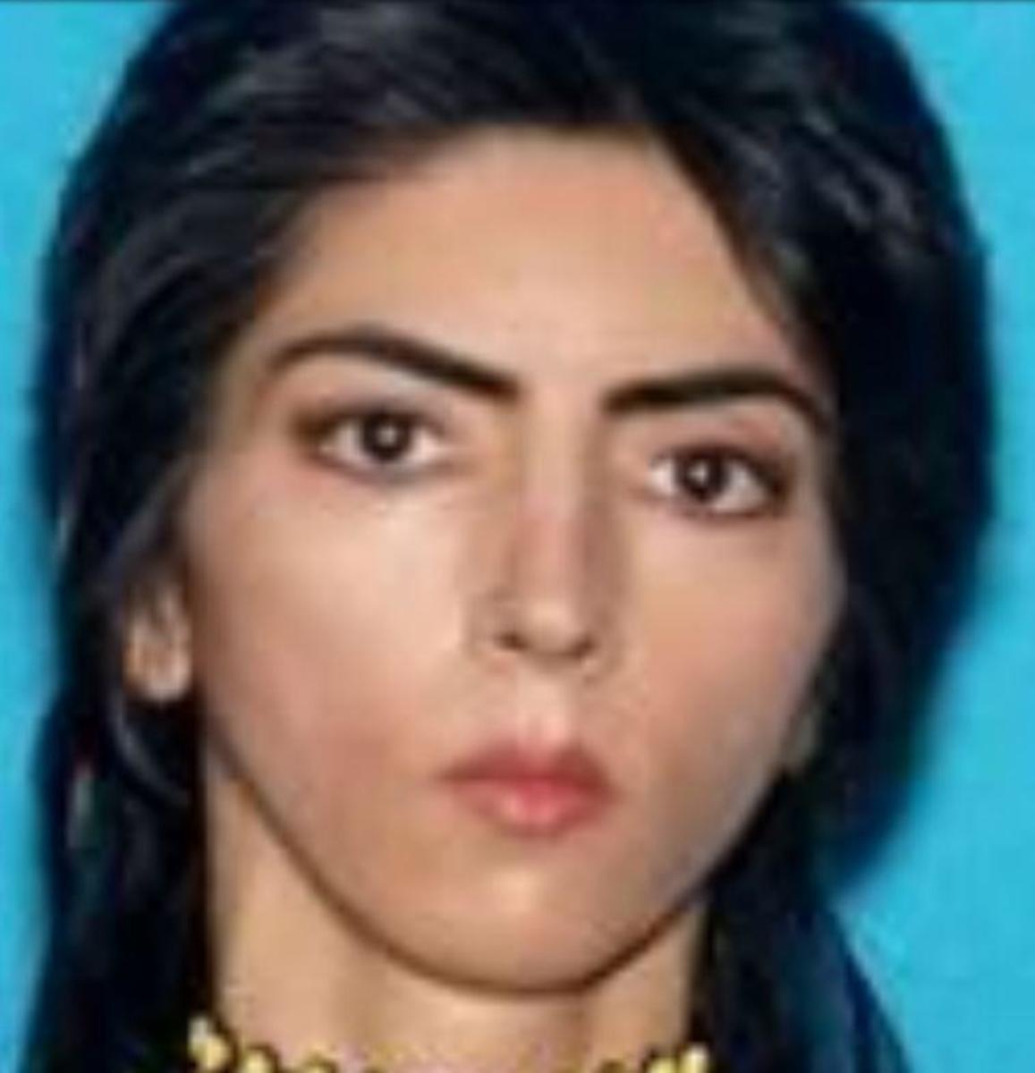 Nasim Aghdam (San Bruno Police)