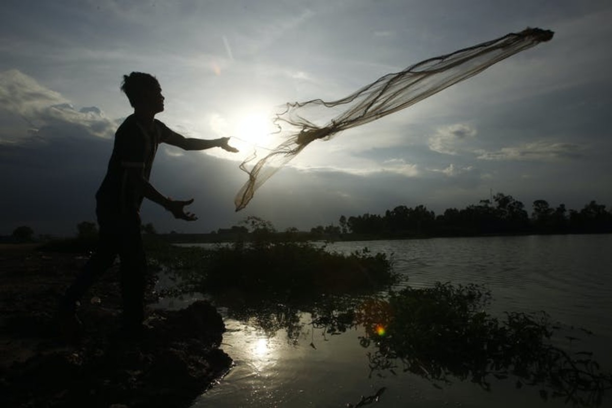 A man casts a fishing net onto a flooded land following rain to catch fish on the outskirts of Phnom Penh, Cambodia, in June 2020. (AP Photo/Heng Sinith)