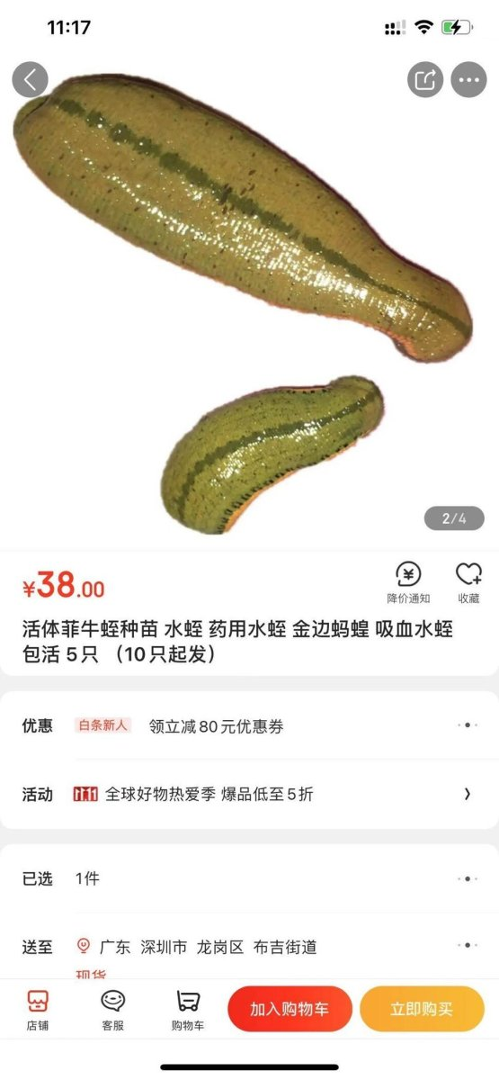 You could even buy live medicinal leeches. Photo: courtesy of JD.com