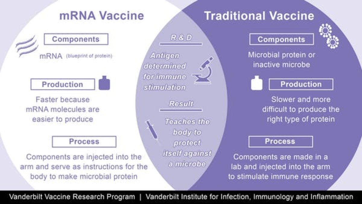 A comparison of traditional with the new mRNA vaccines. CC BY-SA