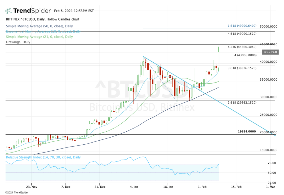 Daily chart of bitcoin.