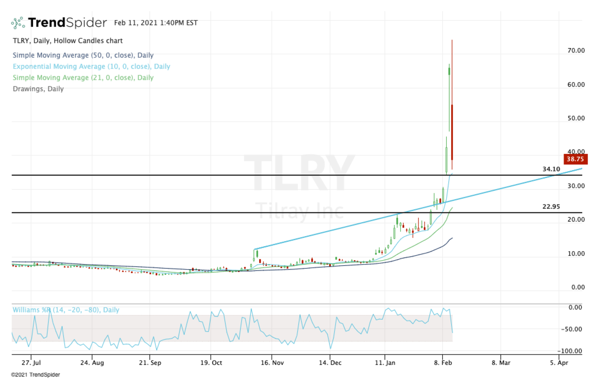 Daily chart of Tilray stock.