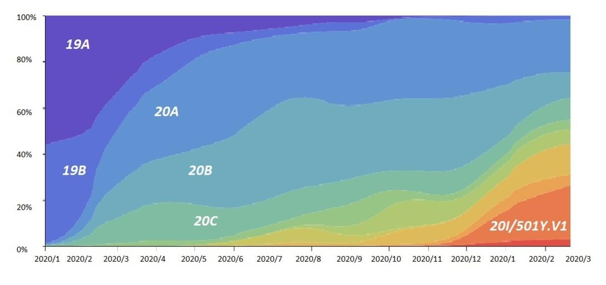 Frequencies of viral clades of SARS-CoV-2, Jan 2020–Feb 2021