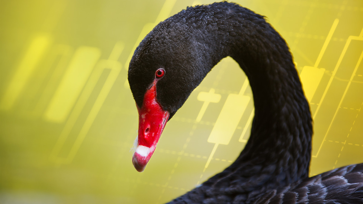 Making Money From Black Swan Events