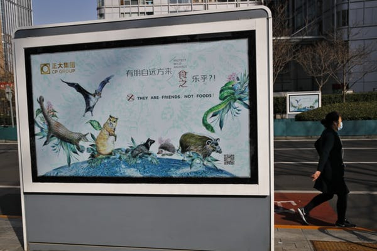 Propaganda poster in Beijing reinforcing wildlife market crackdowns, March 11, 2020. AP Photo/Andy Wong