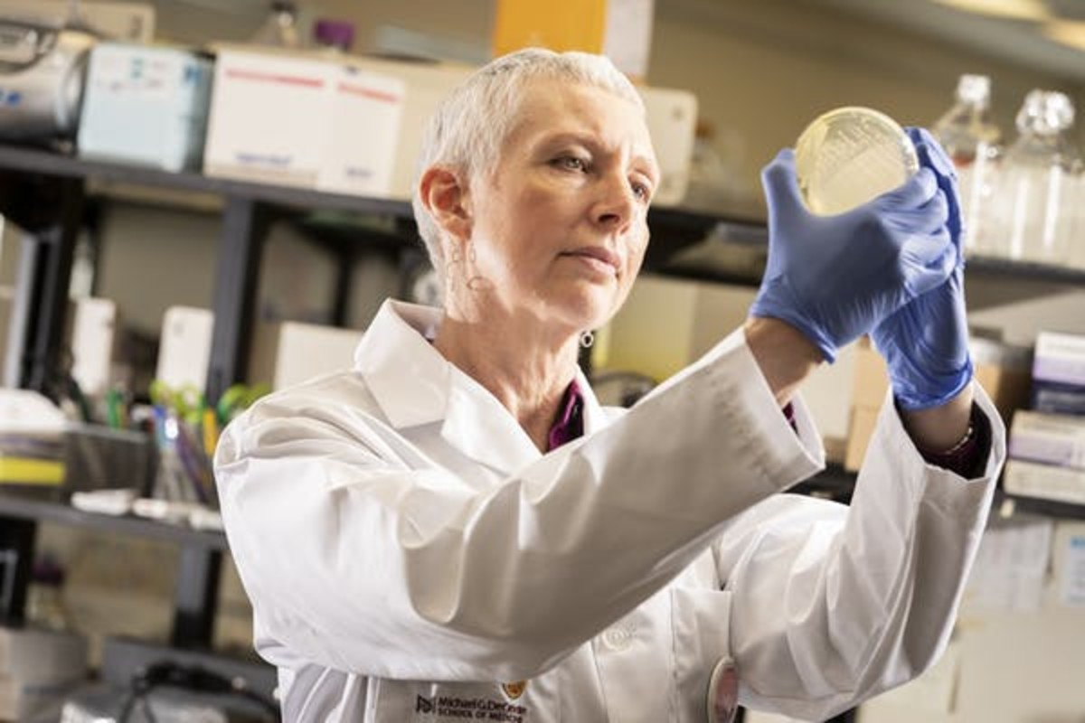 The author at work in the lab at McMaster University's Institute for Infectious Disease Research. (J.D. Howell, McMaster University), Author provided