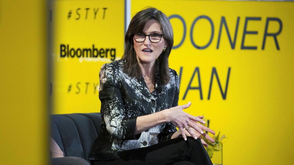 Figure 1: Cathie Wood, CEO of ARK Invest.