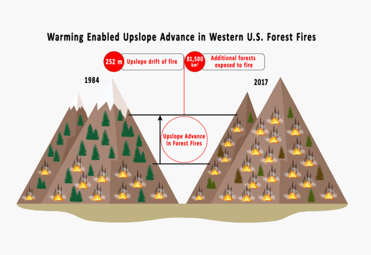 On average, fires have spread 826 feet (252 meters) higher into the mountains in recent decades, exposing an additional 31,400 square miles (81,500 square kilometers) of forests to fire. Mojtaba Sadegh, CC BY-ND
