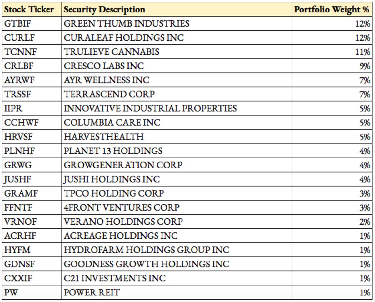 MSOS Top Holdings