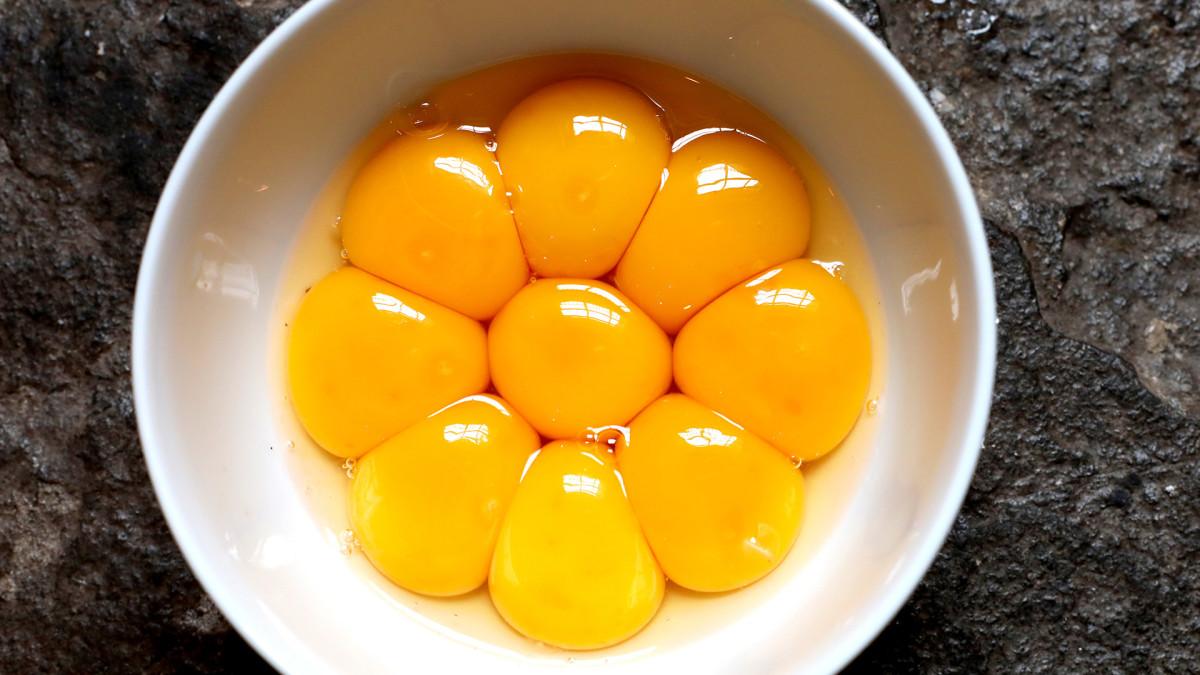 Egg Yolks Lead