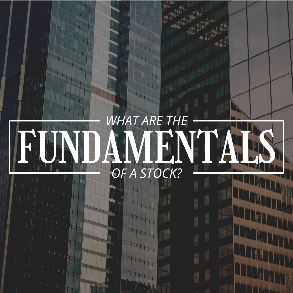 """Darkened photo of skyscraper windows in a city with text overlay that reads """"What Are the Fundamentals of a Stock?"""""""