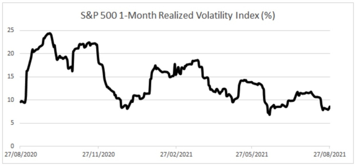 Figure 3: S&P 500 one-month realized volatility index.