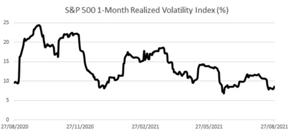 Figure 3: S&P 500 1-month realized volatility index.