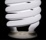 Choose the Smartest Bulb From the CFL Pack